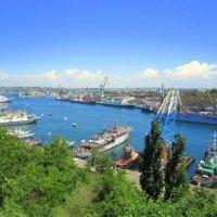 Южная бухта :: Zinaida Belaniuk
