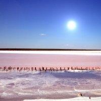 ...солевое озеро... :: Ольга Нарышкова