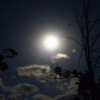 луна :: сергей