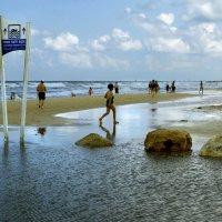 Наши пляжи :: Эмиль