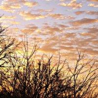 облака на закате :: Татьяна Королёва