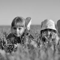 Мои детки :: Виталий Масюк