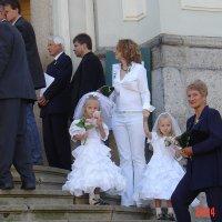 Невесты :: Николай Танаев
