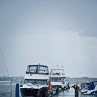 Всем дождь :: Анастасия Фокина