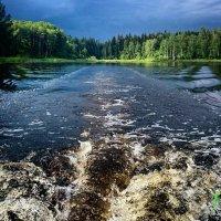 Бегом от тучи :: Дмитрий MusiKc