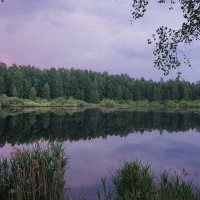 Июньское утро. :: Юрий Шувалов