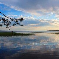 отрадное озеро :: Дашка Adms