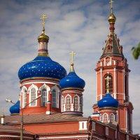Богородицерождественский собор :: Александра Сучкова