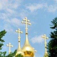 Купола :: Александр Яковлев