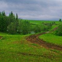 Эх путь дорожка... :: Владимир Хиль