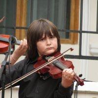 Маленький скрипач :: Marina Timoveewa