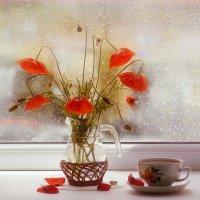 Майский дождь за окном :: Юлия Эйснер