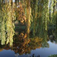 Песня осени :: Виктор Марченко