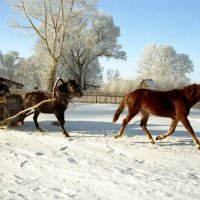 В Потеряевке - зима... :: Александр Волобуев