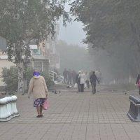 Шахматы :: Сергей Коновалов