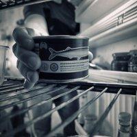 Мир глазами холодильника :: Владимир Ноздрачев