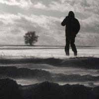 Waves of winter :: Artem Ryzhykov