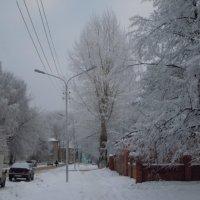 Мой город :: Елена Ершова