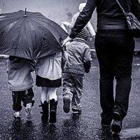 в дождь :: Ирина Ледовская