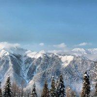 Вид на Кавказский хребет с г.Псехако, Красная Поляна :: Андрей Кравец