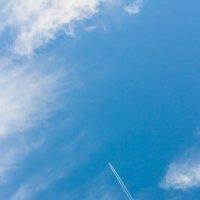 Голубое небо.... :: Александр Манько