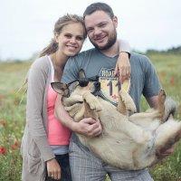 Funny dog :: Ирина Якобсон