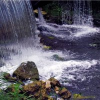 Вода :: Анастасия Созинова