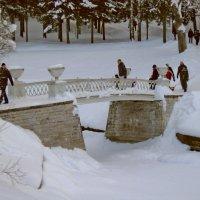 Чугунный мостик зимой :: Олег Попков