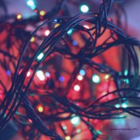 в предвкушении Нового Года :: Ekaterina Gracheva