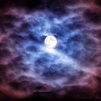Ночная луна :: Владислав Колесников