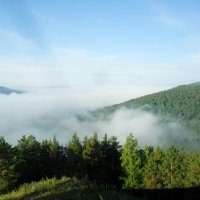 утренний туман :: алексей полковников
