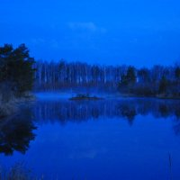 Ночь на болоте... :: Anatoley Lunov