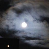 лунная соната 1 :: Алексей Кудрявцев