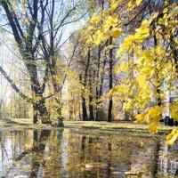 осень :: Елена Сазонтова