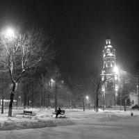 Вот такая чёрно-белая зима........... :: татьяна соловьёва