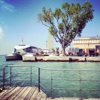 Венеция. Порт. 2012. :: Misha SPB