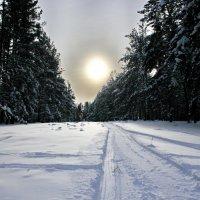 Сибирь зима :: Сергей Бурнышев
