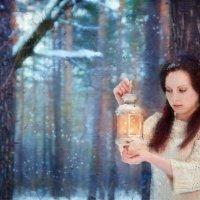 За цветами в зимний лес... :: Светлана Морсина