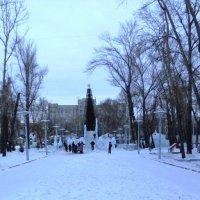 Зимний парк :: Дмитрий Аев