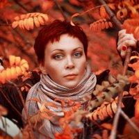 Осень :: Ярослав Ивакин