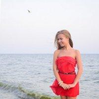 Азовский залив :: анжелика богданова