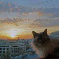 на балконе :: Александра К