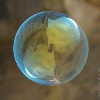 Мыльный пузырь :: Алексей Южаков