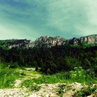 Кавказ :: Михаил Тоискин