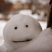 Снежный человек :: Денис Мартынов