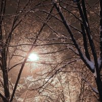 Ночь...улица...фонарь ...зима :: Елена Казакевич