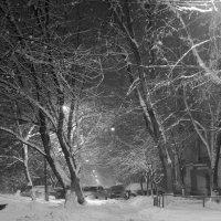 Зимний дворик :: Елена Казакевич