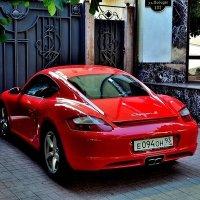 Cayman :: Dinar Shartdinov