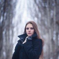 Мой Декабрь :: Руслан Аминов