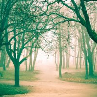 Дорога в рай :: Alena Ldinka